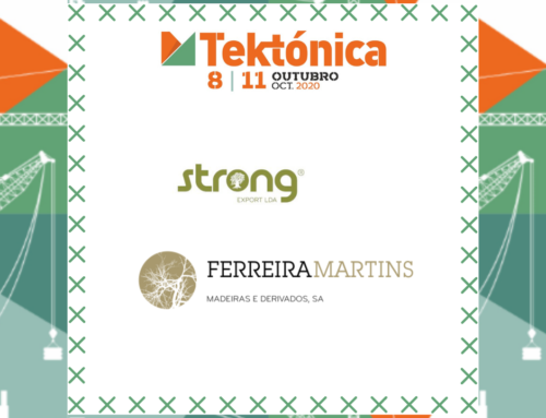 Ferreira Martins presenta na Tektónica 2020